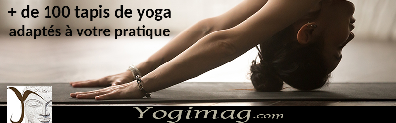 Boutique yoga débutant yogimag
