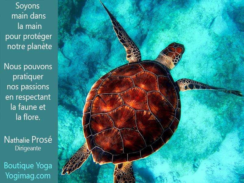 Boutique yoga écologique Yogimag