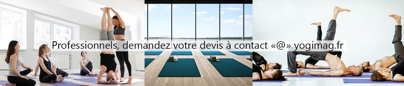 Grossiste accessoires de yoga pro france europe Yogimag