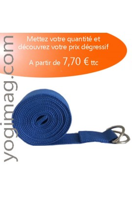 Lot Sangle Yoga Bleue Professeur