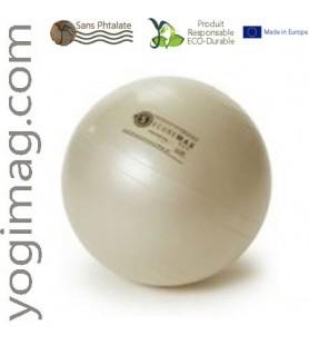 Ballon loisir yoga de travail exercice du corps sport for Housse ballon yoga
