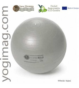Ballon de Gym Yoga Swiss Ball spécial exercices Securemax 65cm