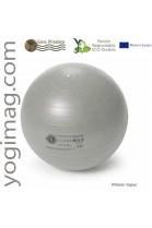 Ballon de Gym Yoga Swiss Ball spécial exercices Securemax 65cm