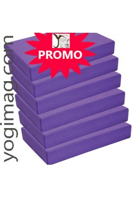 12 blocs de yoga en mousse EVA Violets