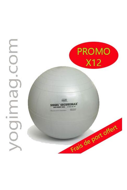 Swiss Ball 65cm professionnel - lot x12
