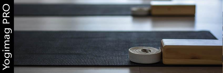 Sacs de yoga Pro