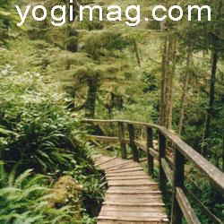 lieu de méditation coussin annuaire yogimag