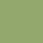 Tapis de yoga olive